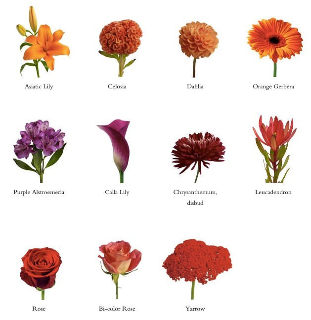 Teleflora examples of fall flowers